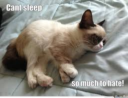 Sleepy Cat Meme - grumpy sleepy cat by harrysmemes meme center