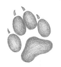 wolf paw print tattoo sketch clip art library