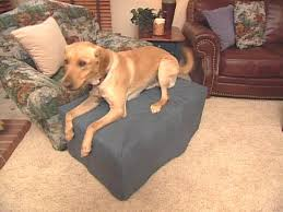 Animal Ottomans by How To Make A Dog Ottoman And Slipcover Hgtv