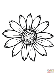 flowering head of sunflower coloring page free printable
