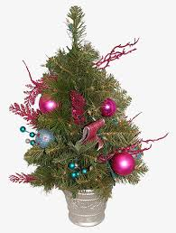 tree real looking color png image for free