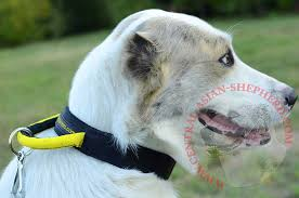asian dog ring holder images Gorgeous wide nylon central asian shepherd collar with quick jpg