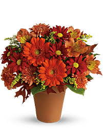 Flowers Ca Discount Code - flowers flower delivery send flowers online teleflora
