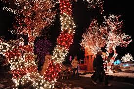 Christmas Lights Colorado Springs Parade Of Lights Zoo Lights Christmas Lights Holiday Displays