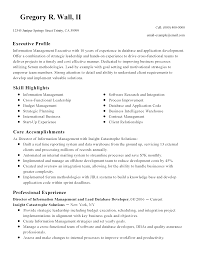 dba sample resume sql developer resumes cover letter sample executive resume for cover letter sql developer resumes cover letter sample executive resume for glenn lee corrected pageoracle dba