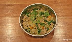 thanksgiving dinner for dogs recipe and
