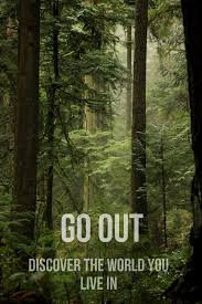161 best Explore Nature Get Outside images on Pinterest