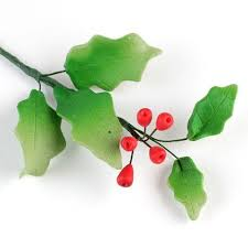 Christmas Cake Decorations Poinsettia by 187 Best Christmas Cakes Images On Pinterest Christmas Cakes