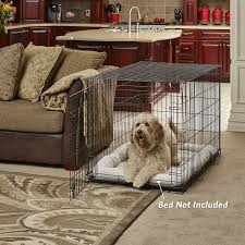 amazon com midwest life stages folding metal dog crate pet