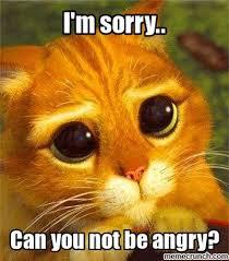 m sorry