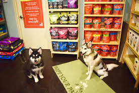 high quality dog foods vs large chain store dog foods welcome