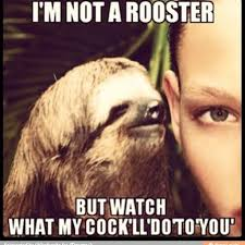 Sloth Whisper Meme - i have never laughed so hard rooster teeth
