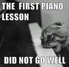 Cat Playing Piano Meme - cat playing piano meme playing best of the funny meme