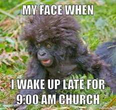 Funny Gorilla Memes - 20 funny monkey memes you ll totally fall in love with