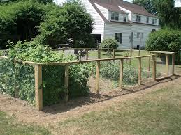 Garden Barrier Ideas Vegetable Garden Fence Ideas Terrific Fabulous Ideas Plus Front