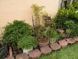 South Florida Landscaping Ideas Best Vegetable Gardening In South Florida Gardening In Florida The