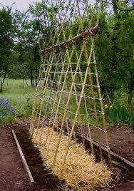 easy pea trellis 20 awesome diy garden trellis projects hative