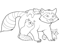 best racoon coloring page 48 in free colouring pages with racoon