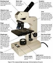 why is a light microscope called a compound microscope compound light microscope diagram mad scientist pinterest