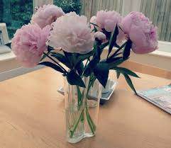 where to buy peonies peonies a spoonful of style