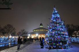 brookfield zoo winter lights time to plan for new year s eve in suburbs