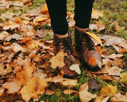 quotes about beauty of fall 25 unique autumn photography ideas on pinterest fall nature