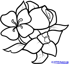 pictures of easy to draw flowers best flowers and rose 2017