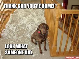 Thank God Meme - thank god you re home 15 pics