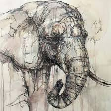 abstract animal portraits by jon shaw elephant paintingsanimal