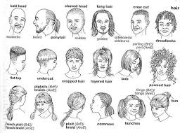hair style esl hairstyle vocabulary vocabulary pinterest english english