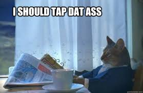 Dat Ass Cat Meme - i should tap dat ass sophisticated cat quickmeme