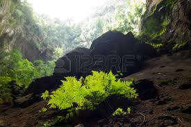 cave entrance stock photos u0026 pictures royalty free cave entrance