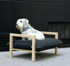 dog beds elevated u2013 thewhitestreak com