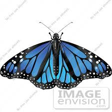 royalty free rf clip illustration of a spanned blue monarch
