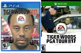 Tiger Woods Memes - new tiger woods games dankmemes
