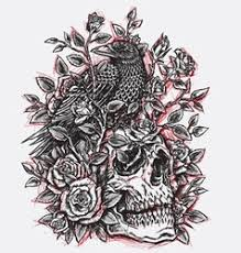 sketchy roses and skull design linewo vector image