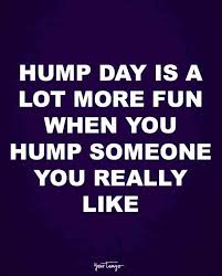 Dirty Hump Day Memes - 10 funny quotes about sex to get you in the mood yourtango