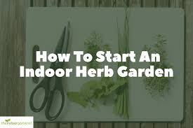how to start an indoor herb garden the indoor gardens