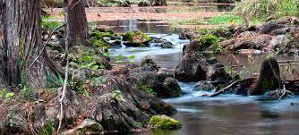 guadalupe river state park u2014 texas parks u0026 wildlife department