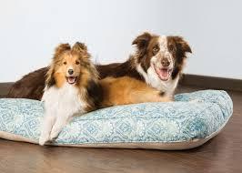 Petsmart Dog Bed Petsmart Services Brand Shoot U2013 Design By Cory