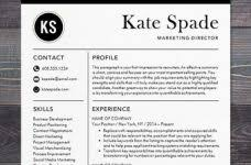 Free Professional Resume Templates Microsoft Word Creative Design Microsoft Word Professional Resume Template