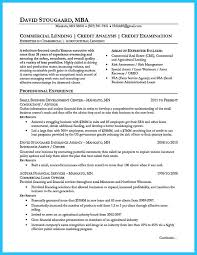 Finance Executive Resume Samples by Credit Analyst Resume Sample Resume Samples Across All