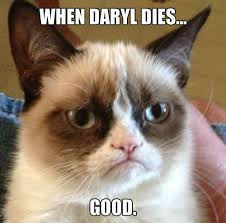 The Grumpy Cat Meme - meme images grumpy cat wallpaper and background photos 36522106