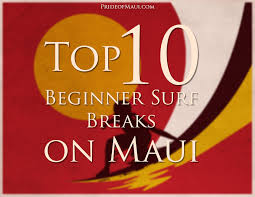 top 10 beginner surf breaks in