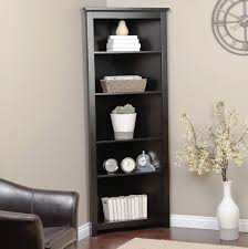 Small Narrow Bookcase by Showcase The Bookcase Other Tips Darling Doodles Arafen