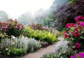 english garden images u0026 stock pictures royalty free english
