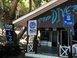 Padi Flag Pro Diver S World Prodiversworld Twitter