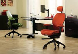 Lifeform Office Chair Lifeform Img1 Jpg