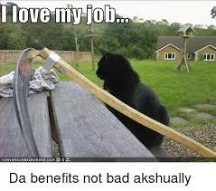 Not My Job Meme - i love my job da benefits not bad akshually meme on esmemes com