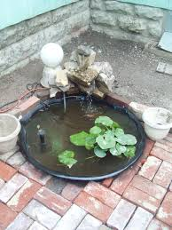 my go at a small pond for water lillies i bought a small hard